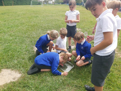 School Visit Activity