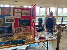 Fishbourne Roman Palace - Hedgehog Aware