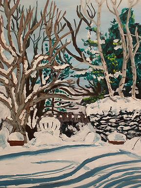 Backyard in Snow.jpg