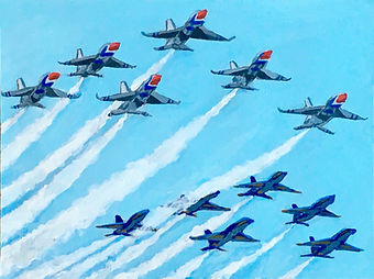 The Blue Angels & Thunderbirds.jpg