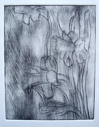 Pumpkins, Parties, & Prints 012.jpg