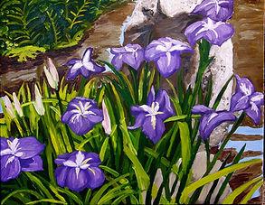 Purple Irisis.jpg