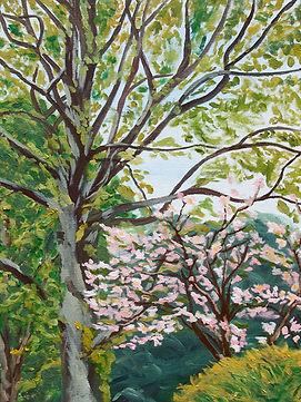 Masterpiece Trees 21x25.jpg