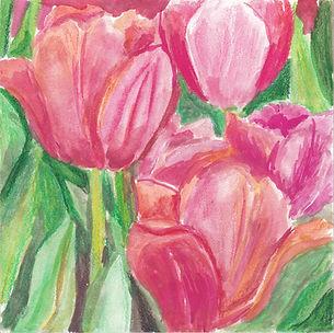 Pink Tulips.jpeg