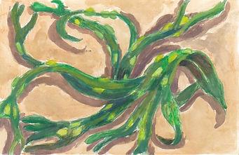 Mass Of Seaweed.jpeg