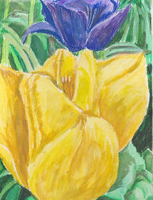 Golden Tulip.jpeg