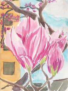 Magnolias.jpeg