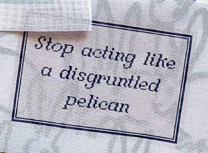 Catelavie Stop acting like a disgruntled pelican (Schitt's Cre