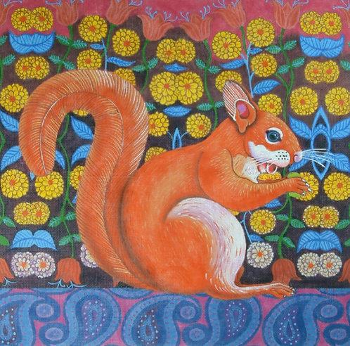 Squirrel 18 mesh