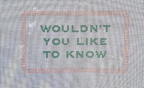 Bylee Needlepoint Wouldn't you like to know