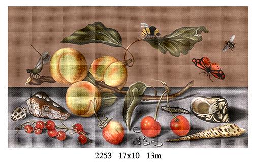 Melissa Shirley 2253 Fruit and Shells