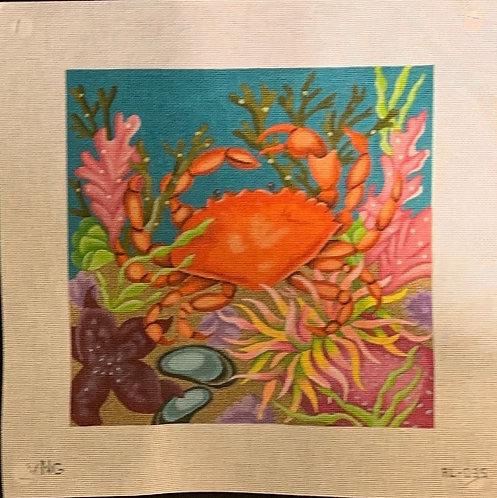 Amanda Lawford Coral Reef Crab AL-035