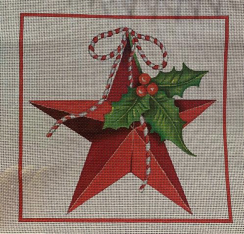Melissa Shirley MLT 557 Christmas Star