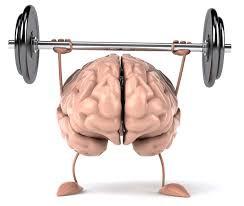 Il cervello deve faticare per non impigrirsi!