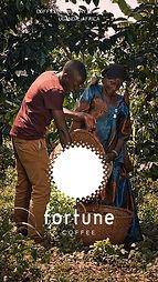 Fortune Coffee Minidoc.jpg