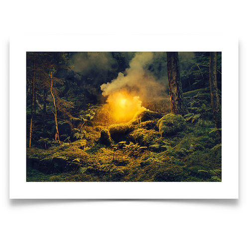 HAVE YOU EVER HEARD OF THIS LUMINOUS GUY WHO BROUGHT A SMOKEMACHINE TO THE WOODS