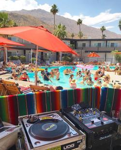 Alf Alpha @ V Palm Springs Pool