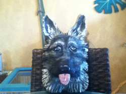German Shepard Wood