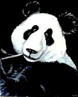 Panda View
