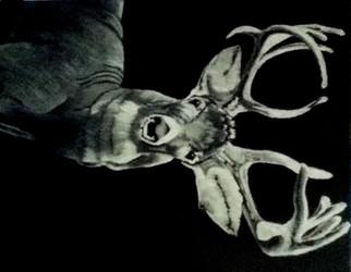 Deer_FrontView.JPG