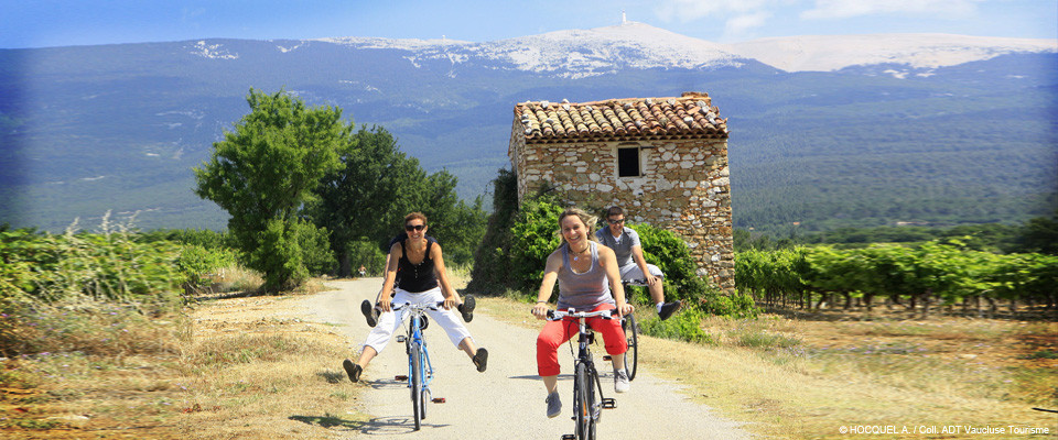 To cycle Ventoux