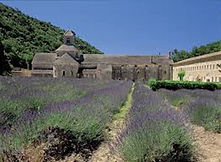 Abbaye de Sénanque à Gordes, Mas Saint-gens, grand gite Provence Carpentras