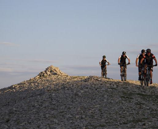 The Mont Ventoux visible from Mas Saint-Gens