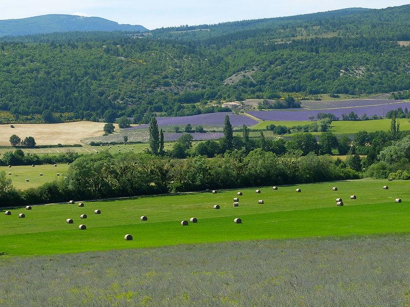 Maison La Divine, gite de groupe proche Avignon