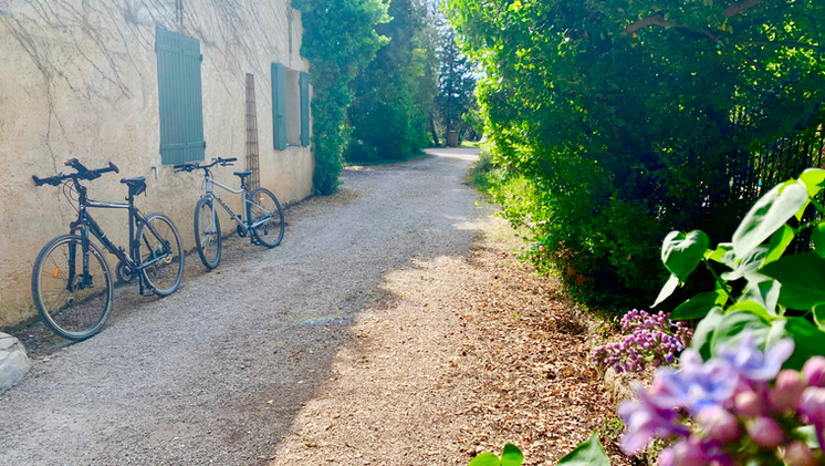 Le Mas Saint-Gens, holiday house to rent in South of France