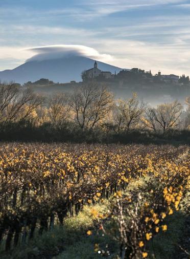 Mont Ventoux visible from Mas Saint-Gens