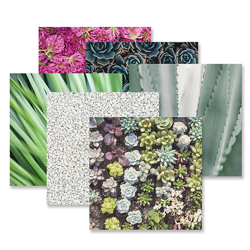 Glowing Gardens Paper Pack (12/pk)