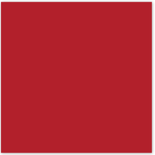 Cranberry Solid 12x12 Cardstock (10/pk)