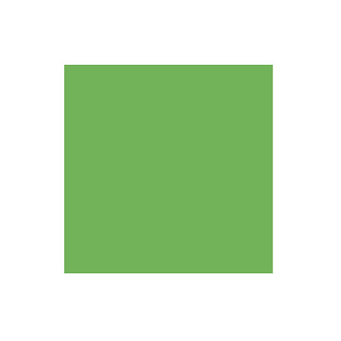Leaf Green Solid 12x12 Cardstock (10/pk)