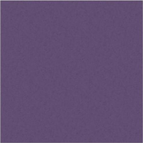 Eggplant Solid 12x12 Cardstock (10/pk)