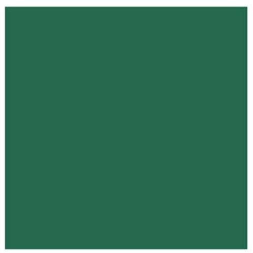 Dark Green Solid 12x12 Cardstock (10/pk)