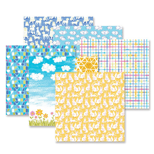 Best in Show Paper Pack (12/pk)