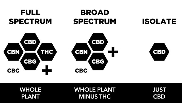 Broad-Spectrum CBD vs. Full Spectrum and Isolates