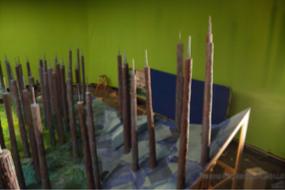 Missing Link Bare Forest Set