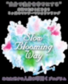 SlowBloomingWay