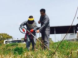 農作業を指導する八尋社長