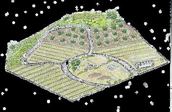 オーガニックパパの農園のイラスト