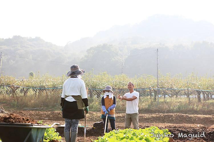 オーガニックパパ畑での作業風景