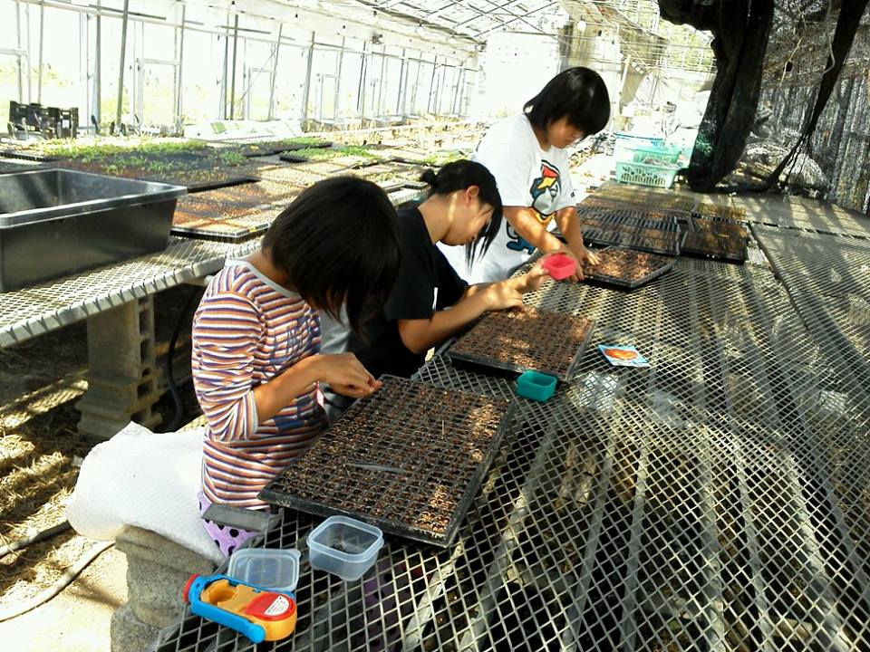 種まきに集中する子たち