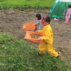 黙々と農作業する子どもたち