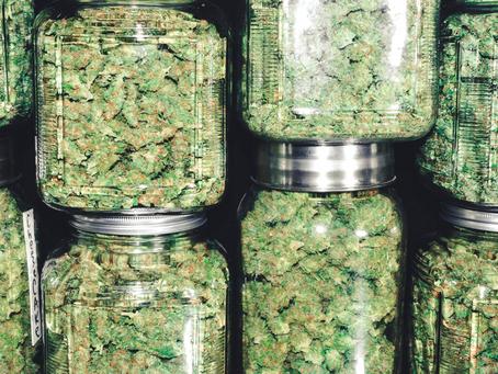 CannaLaw: Alabama Senate Committee Approves Medical Marijuana Legalization Bill