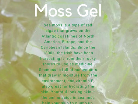 Sea Moss Gel & It's Benefits