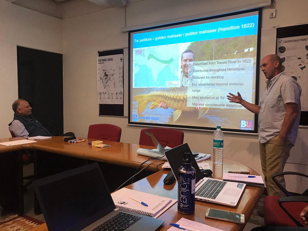Adrian Pinder discusses the challenges and opportunities for mahseer conservation with Ravi Singh (Secretary General and CEO of WWF India) and other key project partners at the Project Mahseer startup meeting in the WWF India headquarters, New Delhi.