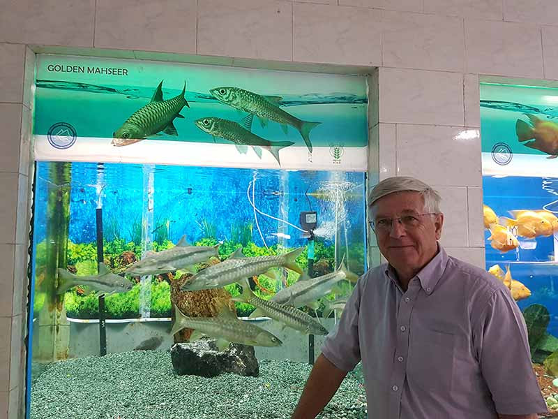 Ian enjoys the Golden mahseer display at the Himani Aquarium