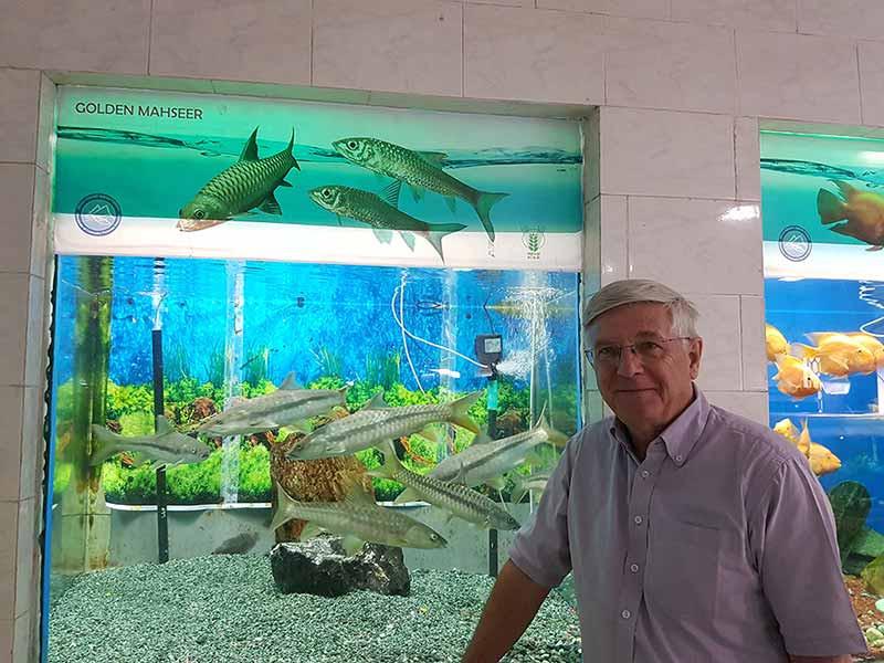 Ian enjoys the Golden mahseer display at the Himani Aquarium
