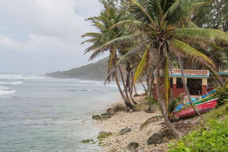 Barbados-8.jpg